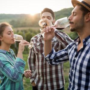 mensen proeven wijn in wijngaard