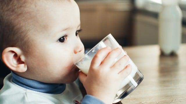 le bébé boit du lait